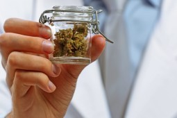 Is Medical Marijuana Addictive? Medicinal Cannabis Doctors