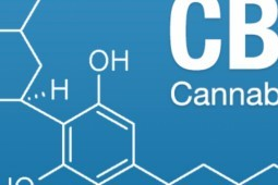 Cannabidiol - Medical Cannabis in Treating Cancer Symptoms