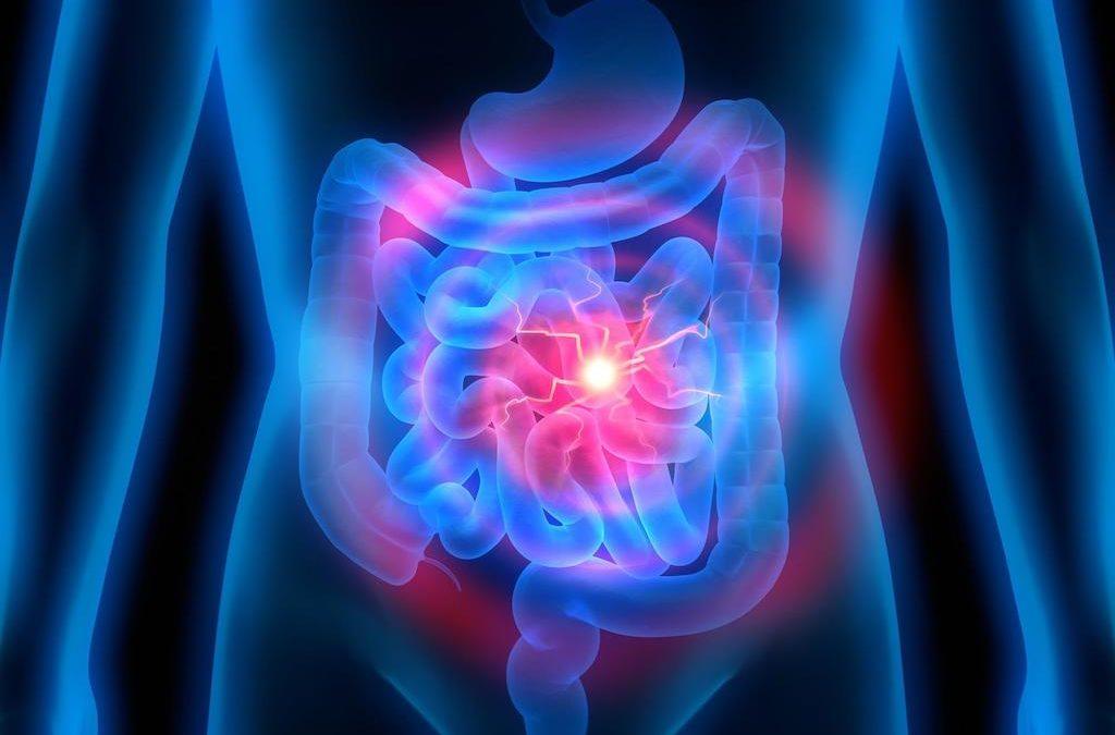 Inflammatory Bowel Disease and medical cannabis